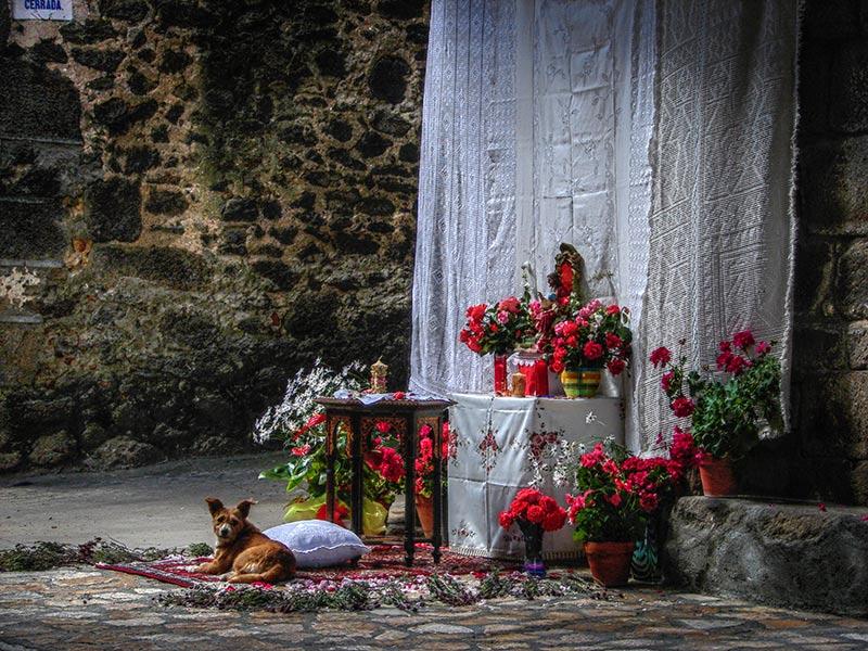 El Corpus Christi en la Sierra de Francia